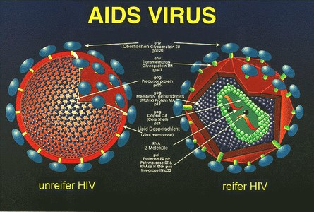 Aids and Omega 3