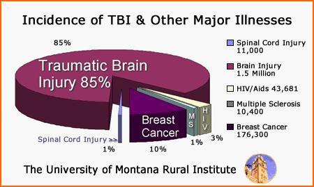 statistics-brain-injury