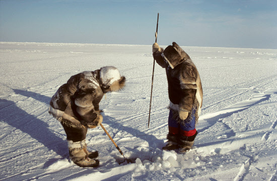 Inuit-seal-hunt