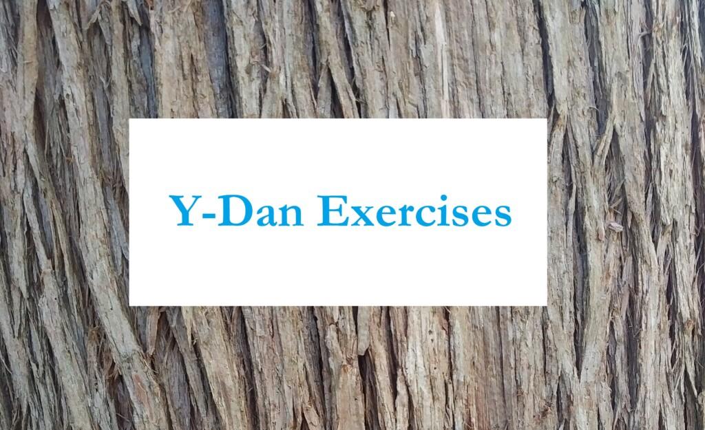 Y-Dan Waitankung Simple Exercises